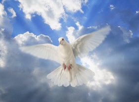HOLY SPIRIT – YOUR PERFECT COMPANION Pr. P. M. George
